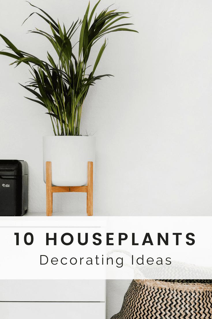 Houseplants Decor Ideas