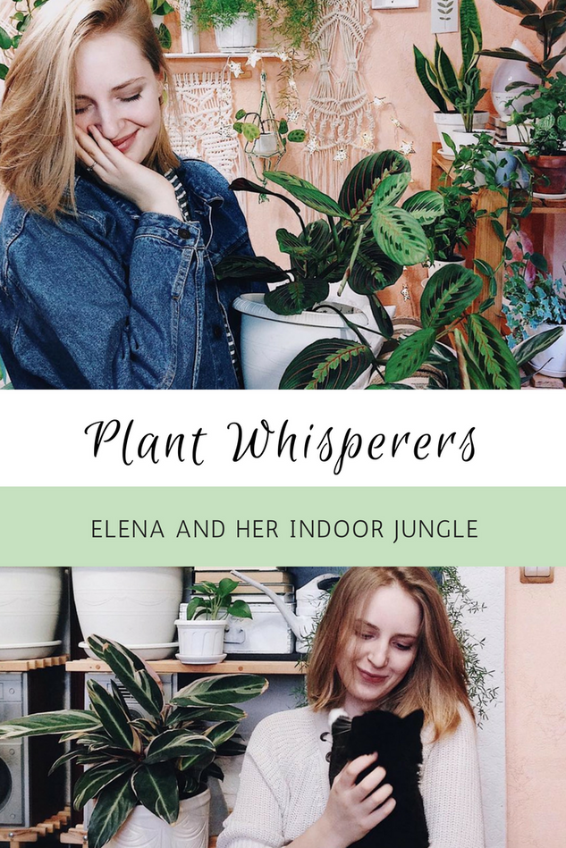2018_08_22_Plant Whisperers.png