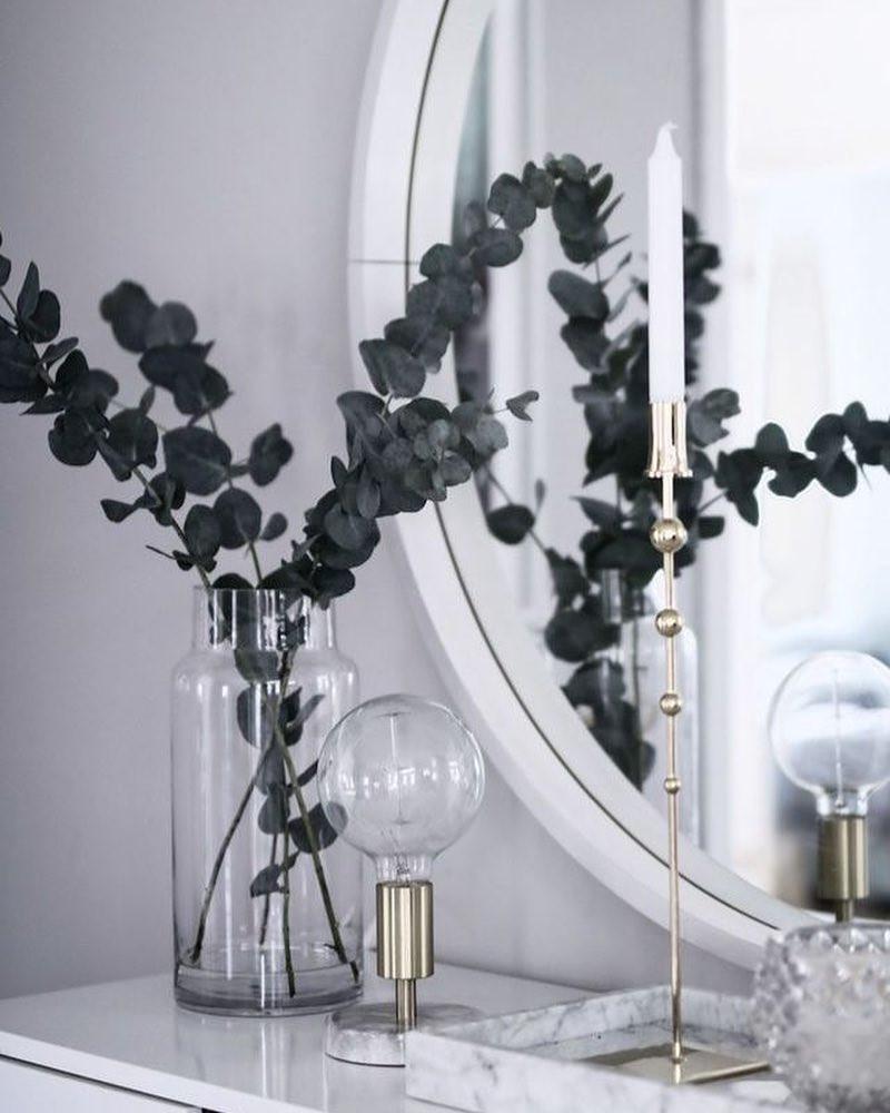 Eucalyptus Scented Houseplant