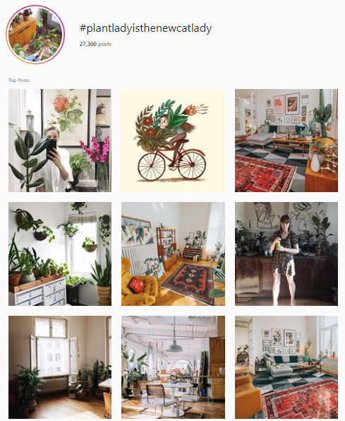 Top 20 Instagram Hashtags For Houseplants Lovers