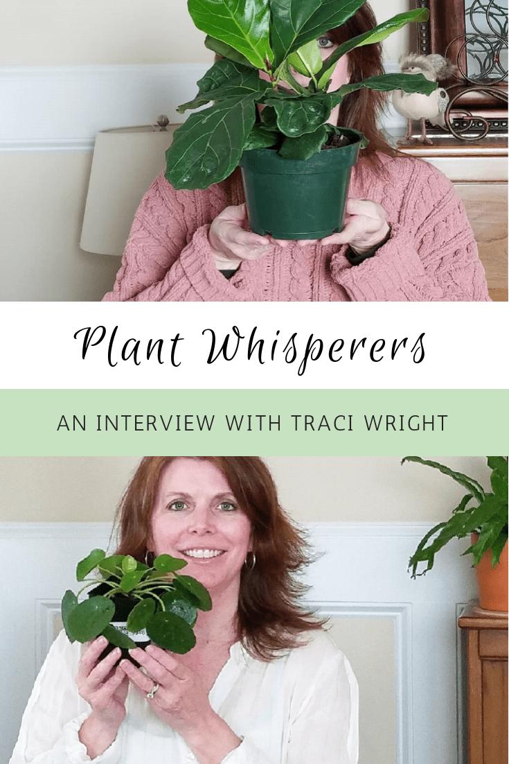Plant Whisperers Houseplants Lovers Pilea Lovers