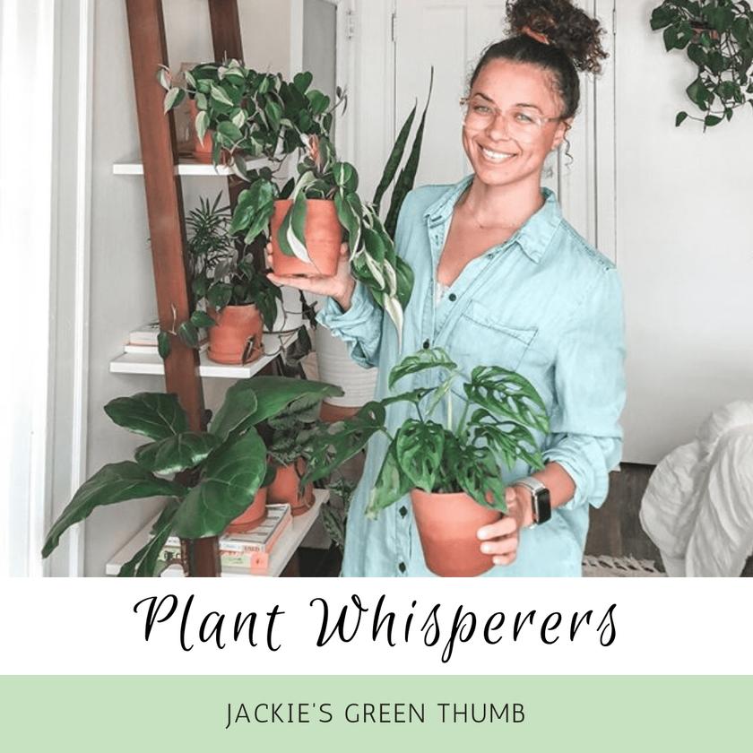 Plant Whisperers: Jackie's Green Thumb