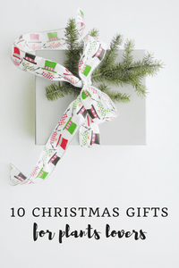 10 Christmas Gifts Ideas For Plants Lovers
