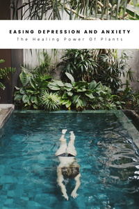 Houseplants and Depression: Plant Therapy And The Healing Power Of Nature