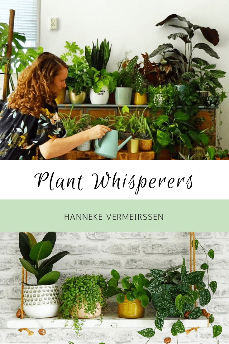 Plant Whisperers: Hanneke Vermeirssen