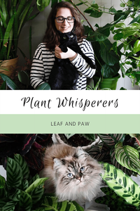 Plant Whisperers: Leaf And Paw