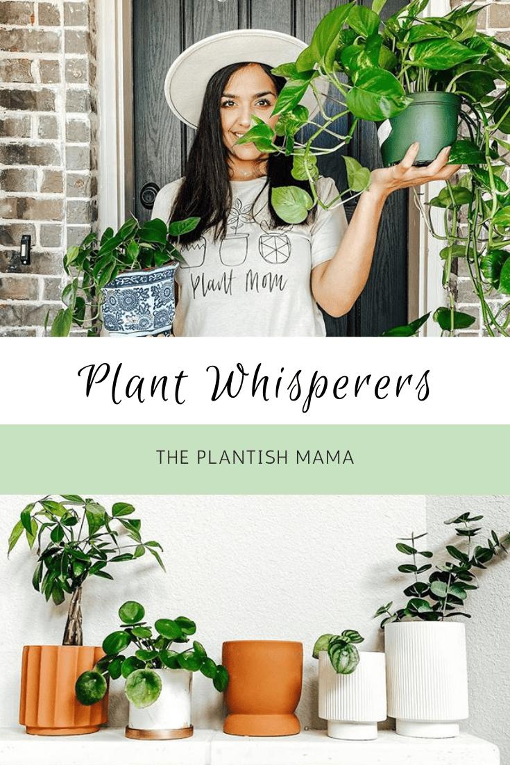 Plant Whisperers: Soil Mates