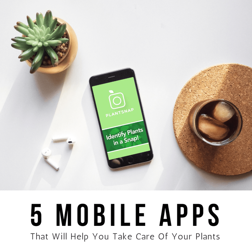 5 Mobile Apps That Will Help You Take Care Of Your Plants