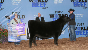 2021 World Beef Expo ROV Results
