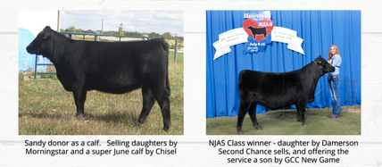 Retherford Land & Livestock: Private Treaty Dispersal Sale