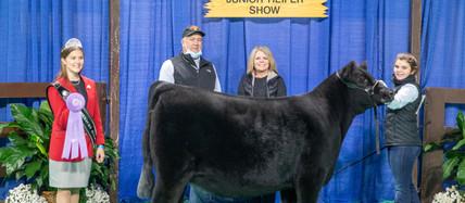 Congratulations to Indiana Angus exhibitors at the 2020 NAILE!