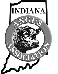 IAA Annual Adult Membership