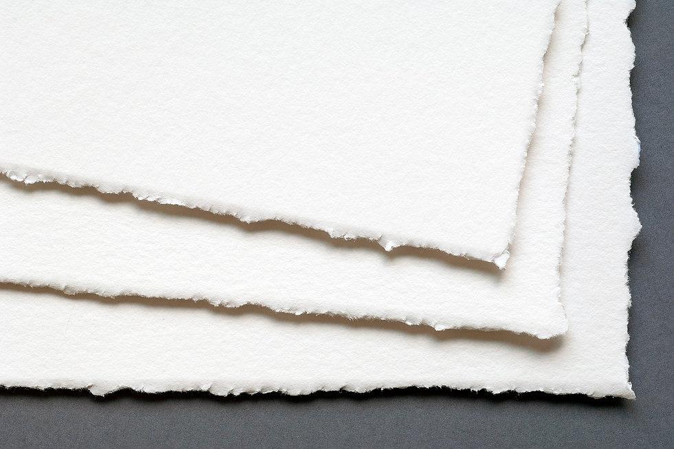 stampe fine art torino, stampa illustrazioni,