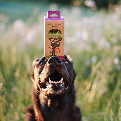 Bolsas Biodegradables Mascotas
