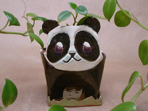 Maceta Panda - CAREBARRO
