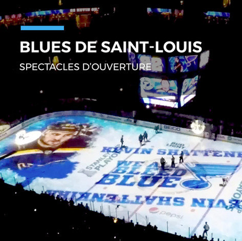 7 - Blues de Saint-Louis.jpg