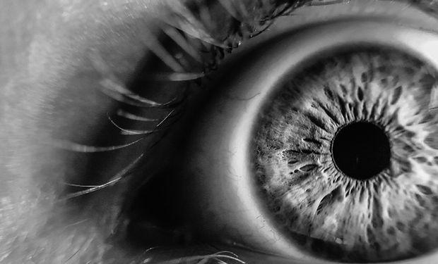 Eye - Iris -Pupil