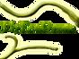 logo FlyEcoDrone.com