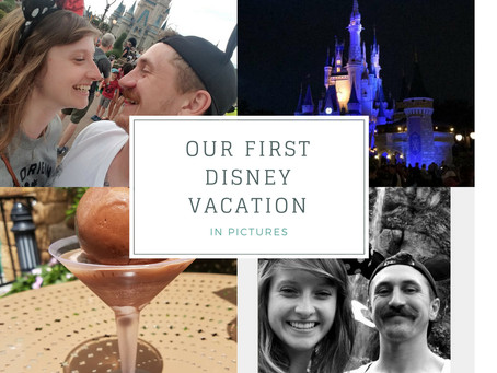 Our First Disney Trip…In Pictures