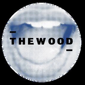 Arielle duotone effect boca + LOGO redondo azul sin cowork.png