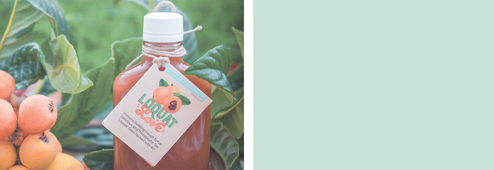Featured Loquat Cough Syrup