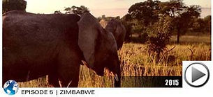 L1mburg_Helpt_2015zimbabwe.jpg