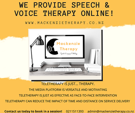 We provide Speech & Voice therapy online