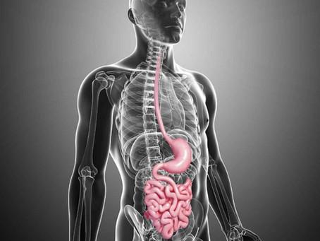 De 7 signalen van een ongezonde darm