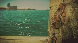 Love Locks ©NGS-MBS