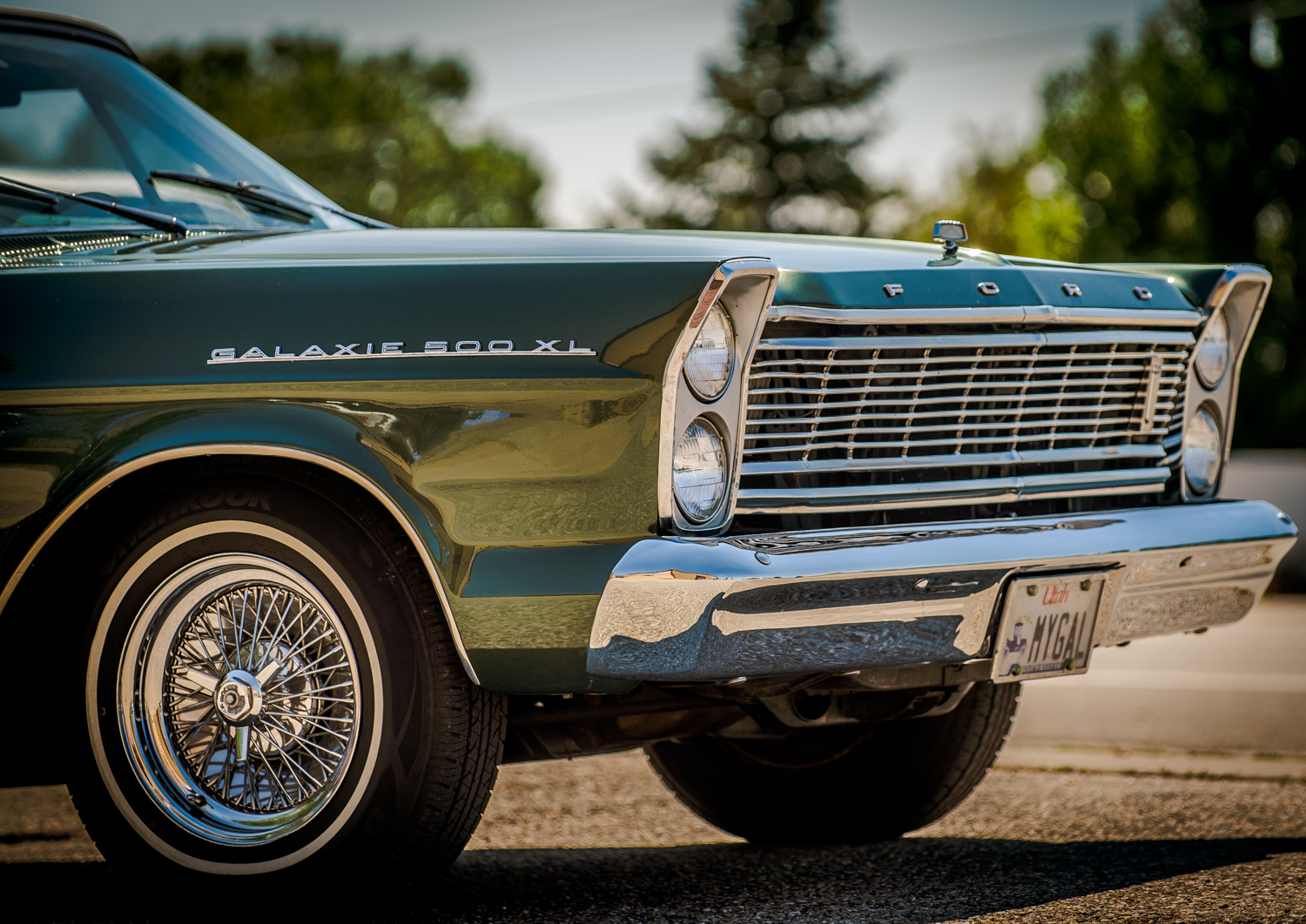 Reed_Muffler_Car_Show_130816_07067_©NGS-MBS