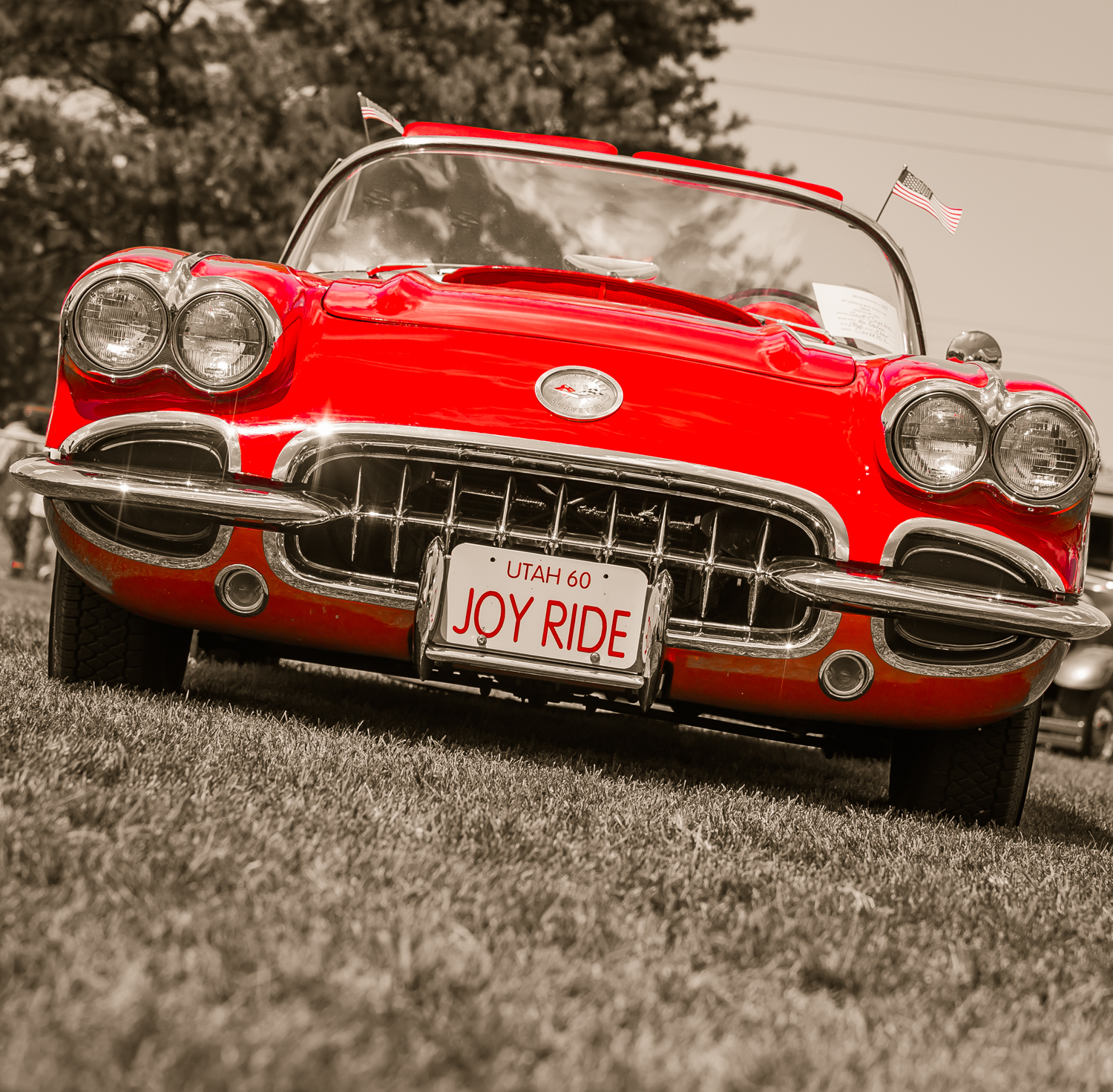 Roy_Days_Car_Show_060816_04601_©NGS-MBS