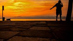 Man vs Dog Sunrise ©NGS-MBS