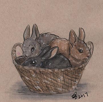 bunnybaskets.jpg