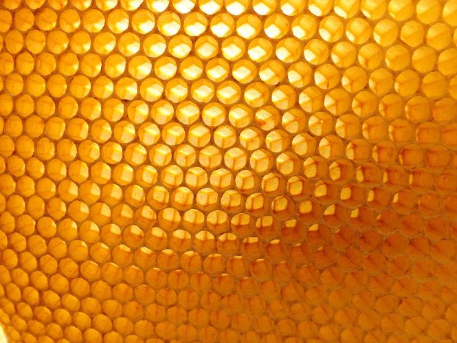 honeycomb-530988.jpg