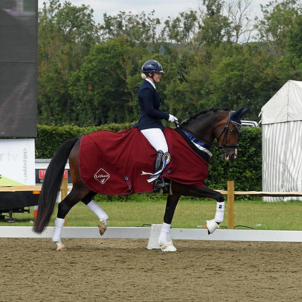 Olivia & Rocky International 6yo winners