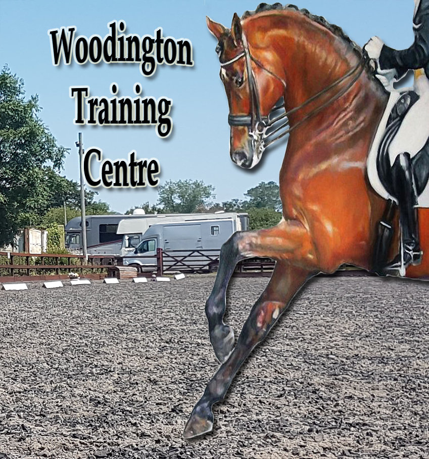 Woodington profile 21.jpg