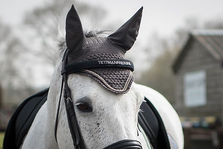 Browband cover by Tettman Equine