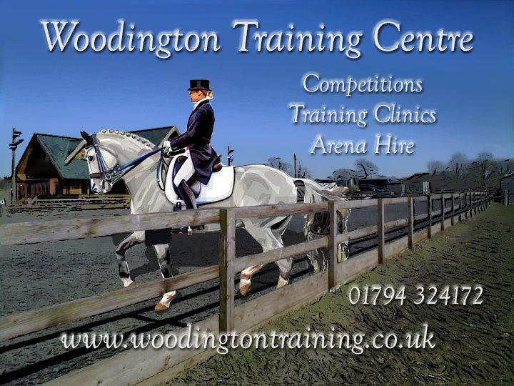 Woodington cover.jpg