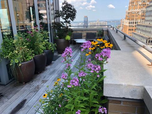 Downtown Brooklyn terrace before