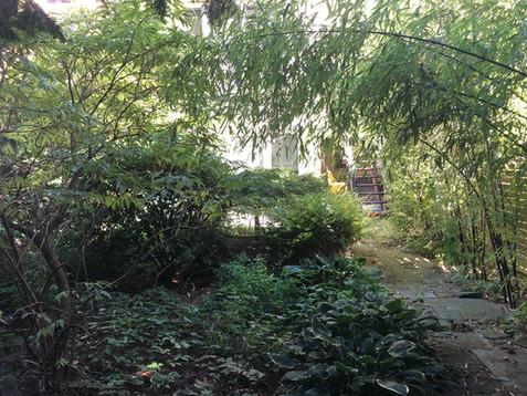 Boerum Hill Backyard before