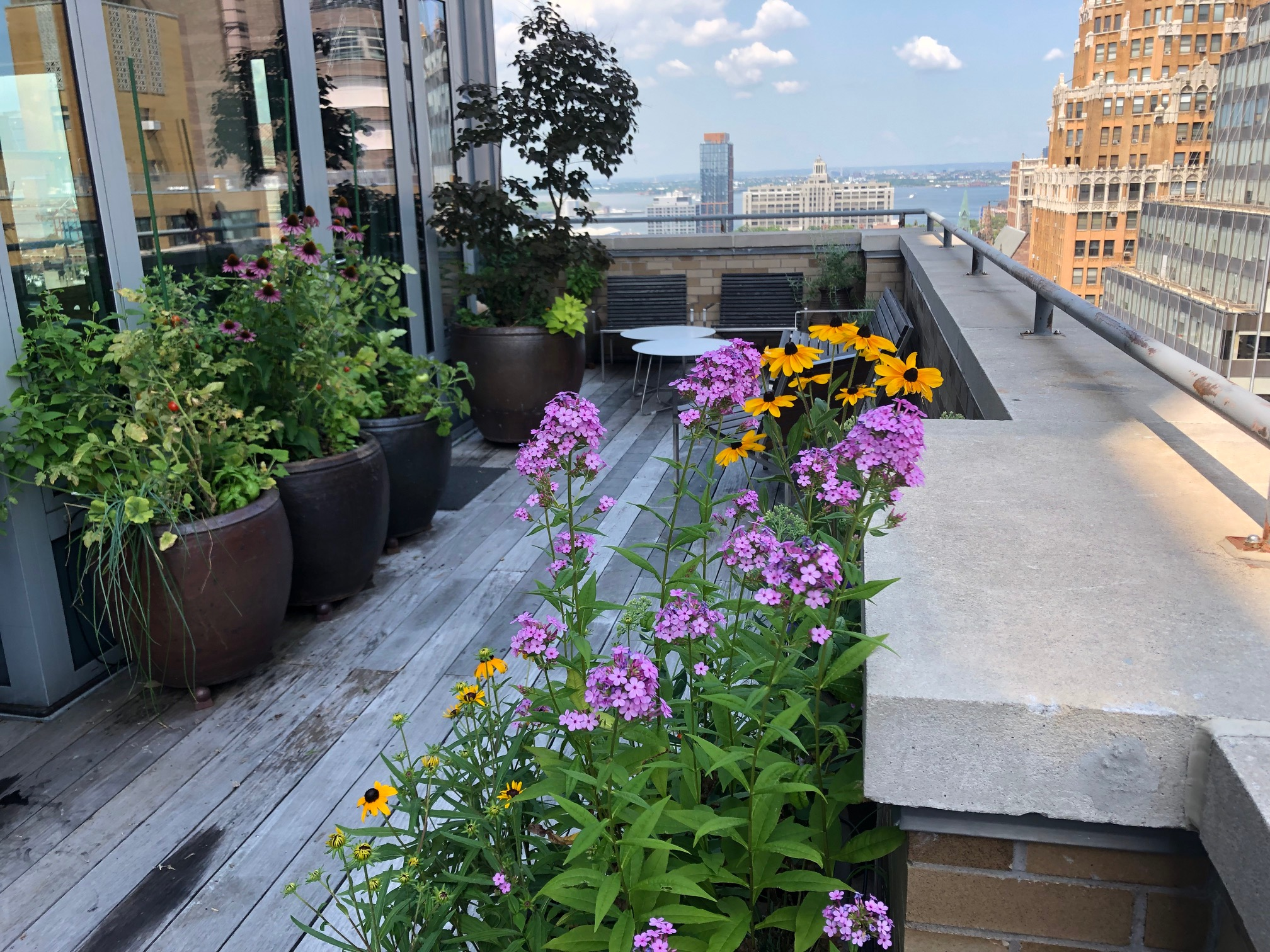 brooklyn terrace garden