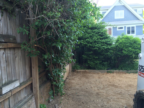 Ditmas Park Backyard before
