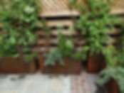 beautiful garden, brooklyn garden design, container gardening, edible garden, english garden, flower garden, food garden, food forest, forest garden, front yard design, garden designers, garden designers near me, garden landscape design, garden landscaping, garden maintenance, gardening for beginners, gardening services, gardening services near me, indoor garden, keyhole garden, landscape design, large outdoor planters, low maintenance plants, mini zen garden, organic gardening, perennial plants, rain garden, rooftop garden, shade garden, urban garden, urban garden center, vegetable garden, wooden planters