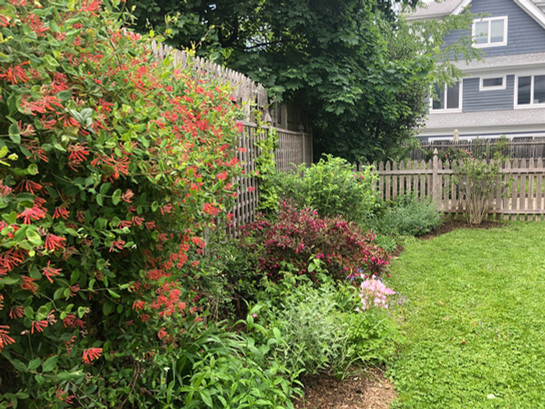 bk bumpkin garden design.jpg