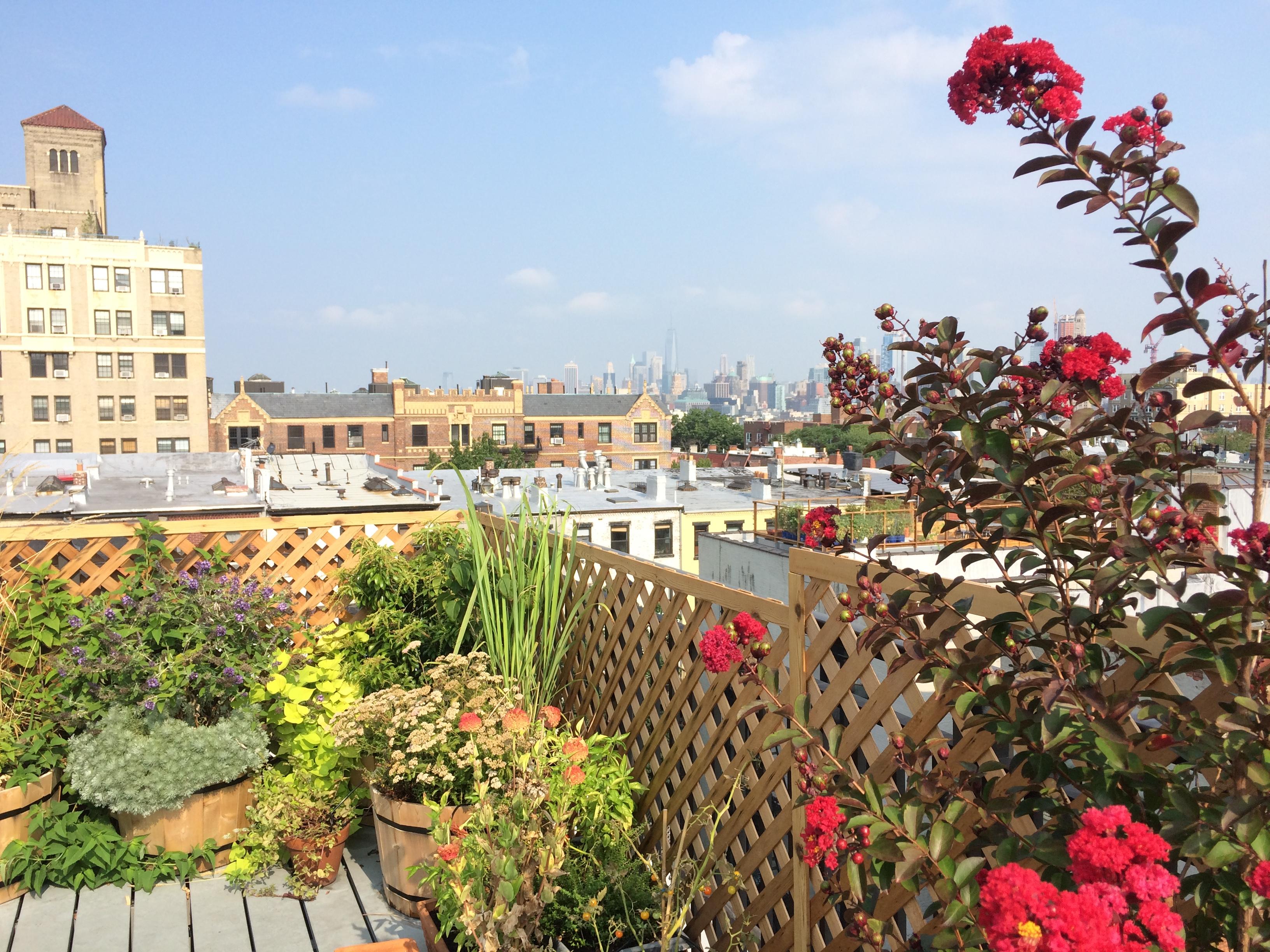 park slope rooftop garden