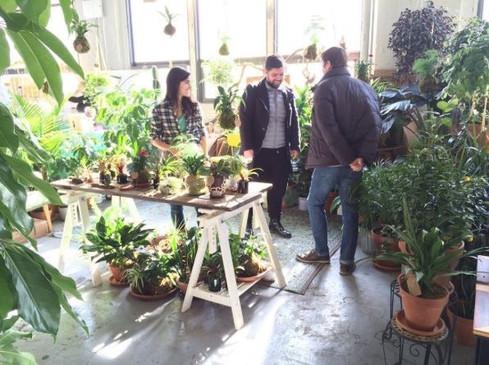 Plant Pop-up Shop After