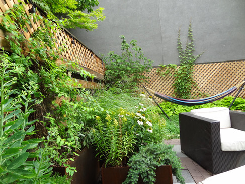 Boerum Hill backyard after