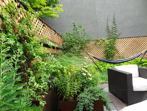 Boerum Hill backyard after