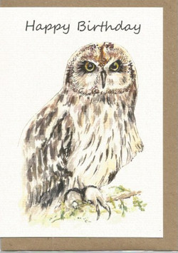 BWW15  Owl