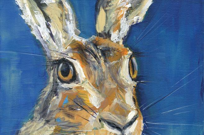 Hare portrait. No.7